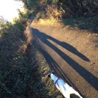 Walking down Cane Pole Trail