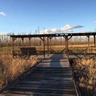 Mizell Prairie